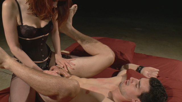 Maitresse Madeline, Tyler Alexander in Divine Bitches: Maitresse Madeline Returns With A Vengeance